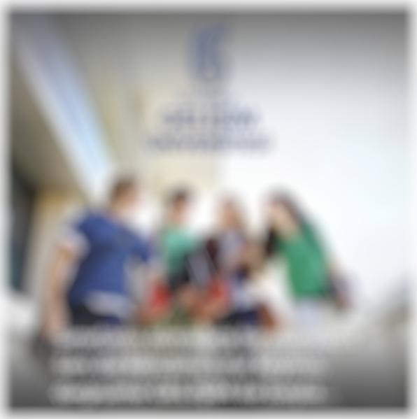 İstanbul Gelişim Üniversitesi 2017 yılı tanıtım kataloğu