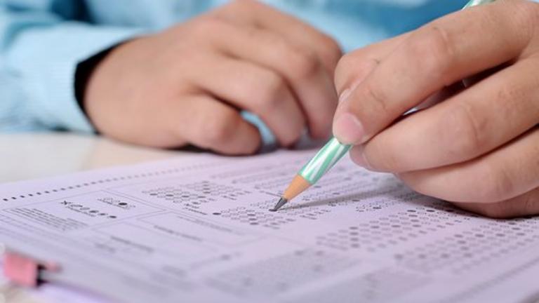 sınav kayısı- Ünal Erdem