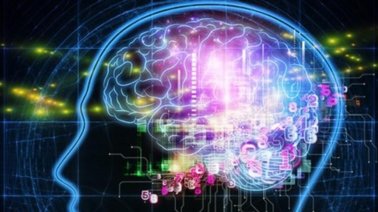 İGÜ SHMYO Biyomedikal Cihaz Teknolojisi