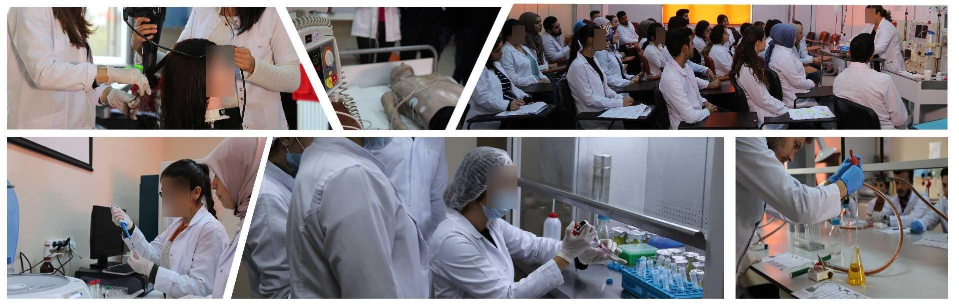 Sağlık Bilimleri Yüksekokulu - İstanbul Gelişim Üniversitesi