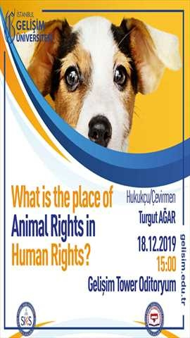 What is the place of Animal Rights in Human Rights?