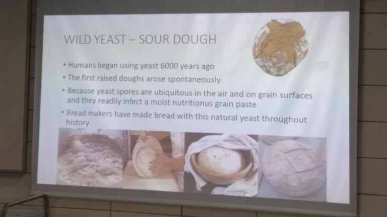 İGÜ Gastronomi (İngilizce) Bölümü Ekşi Mayalı Ekmek Workshop