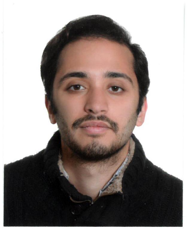 Ahmet Berk Dizmen