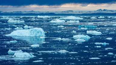 """BM İklim Raporu Gezegen İçin Bir """"Kırmızı Alarm"""": Guterres"""