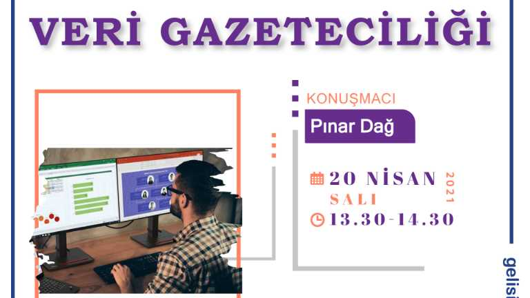 Veri Gazeteciliği Pınar Dağ